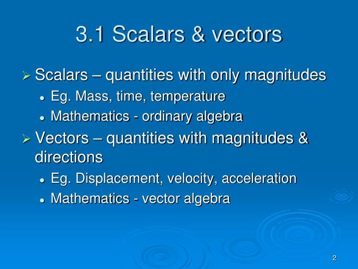 3.1 Scalars & vectors