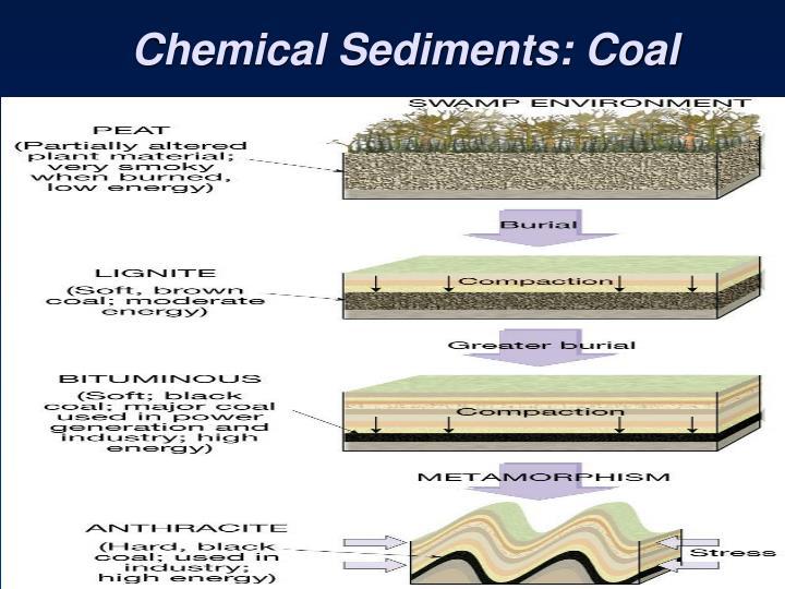 Chemical Sediments: Coal