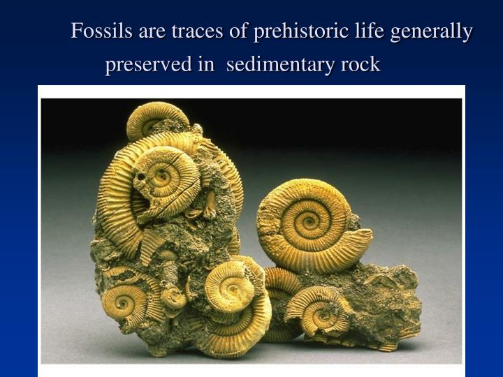 Fossils are traces of prehistoric life generally preserved in  sedimentary rock