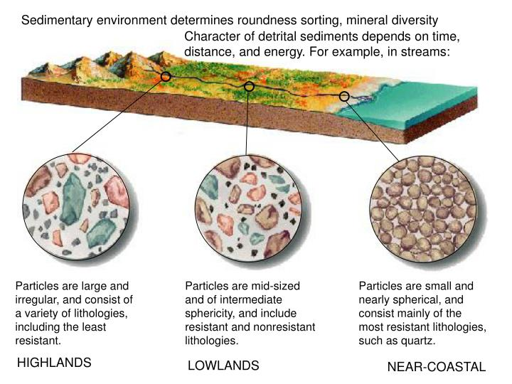 Sedimentary environment determines roundness sorting, mineral diversity