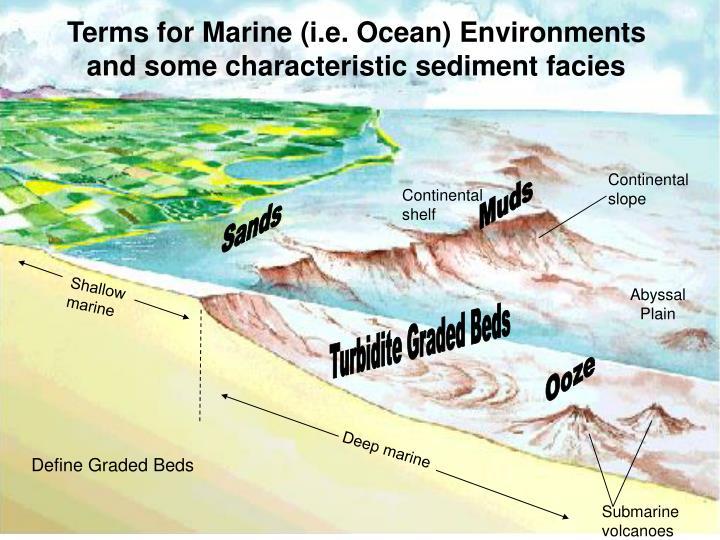 Terms for Marine (i.e. Ocean) Environments