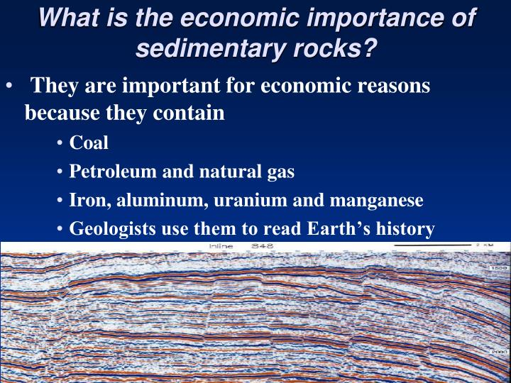 What is the economic importance of sedimentary rocks?