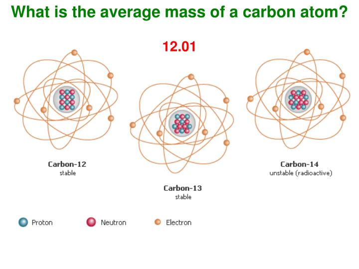 What is the average mass of a carbon atom?