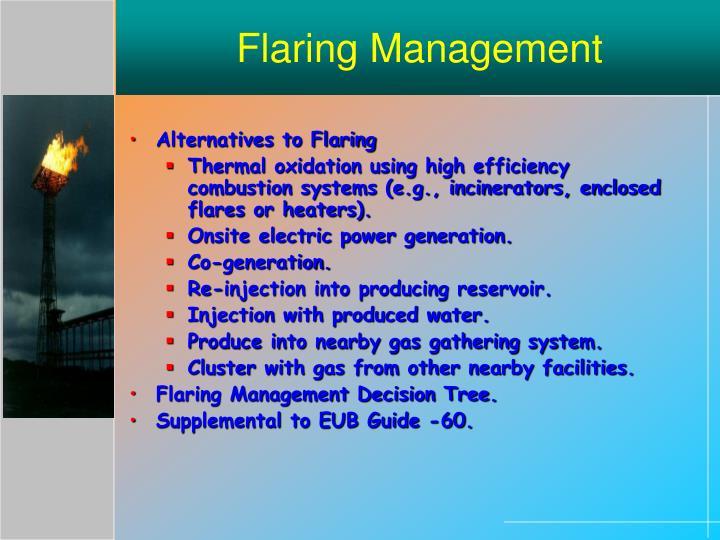 Flaring Management