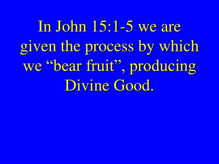 """In John 15:1-5 we are given the process by which we """"bear fruit"""", producing Divine Good."""