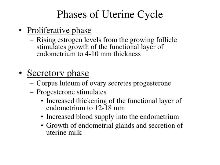 Phases of Uterine Cycle