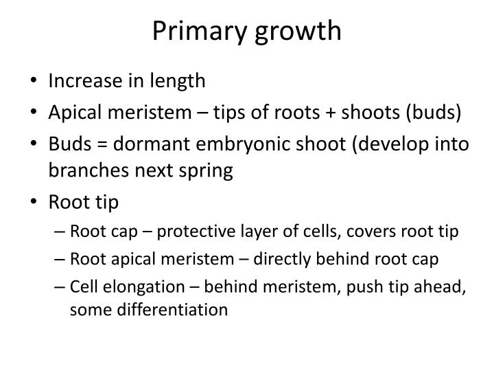 Primary growth