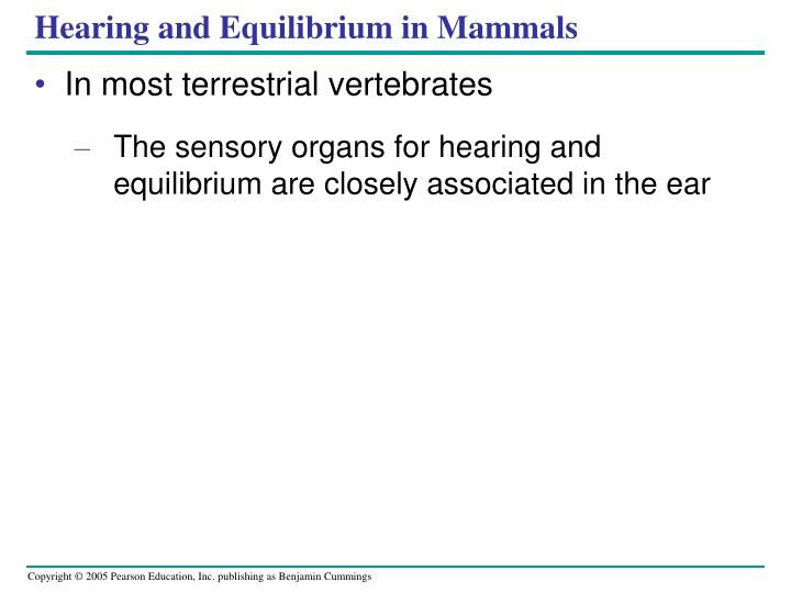 Hearing and Equilibrium in Mammals