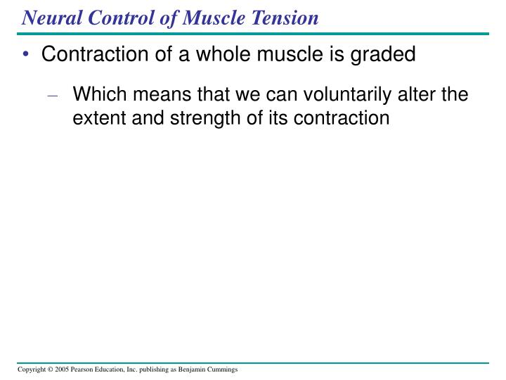 Neural Control of Muscle Tension