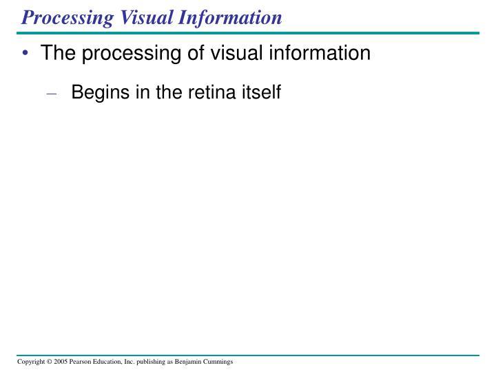 Processing Visual Information