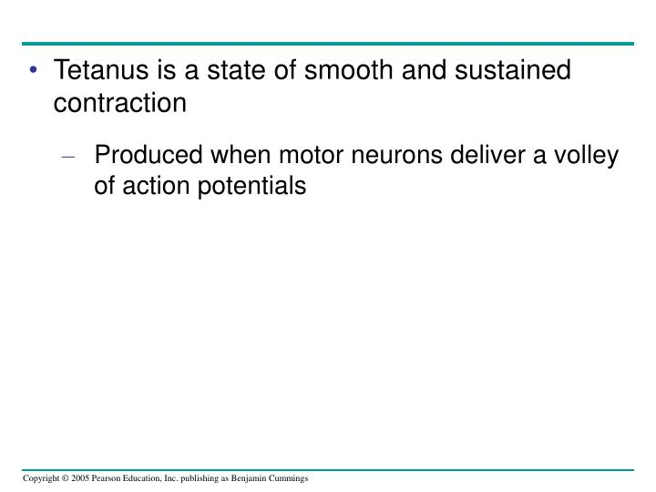Tetanus is a state of smooth and sustained contraction