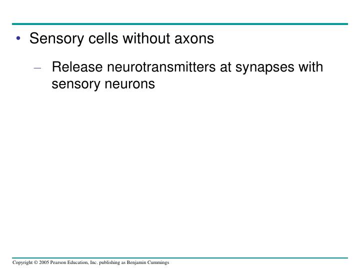 Sensory cells without axons