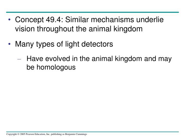 Concept 49.4: Similar mechanisms underlie vision throughout the animal kingdom
