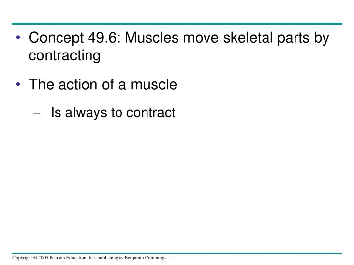 Concept 49.6: Muscles move skeletal parts by contracting