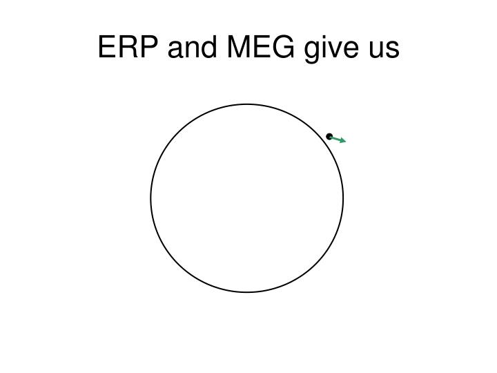 ERP and MEG give us