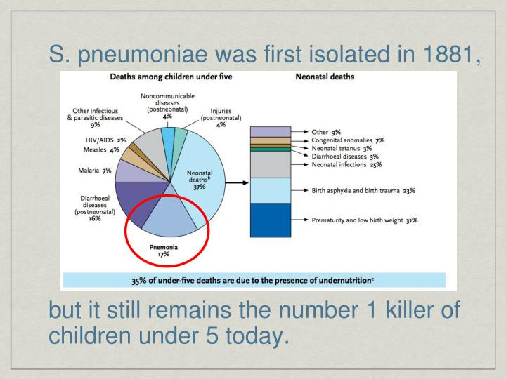 S. pneumoniae was first isolated in 1881,