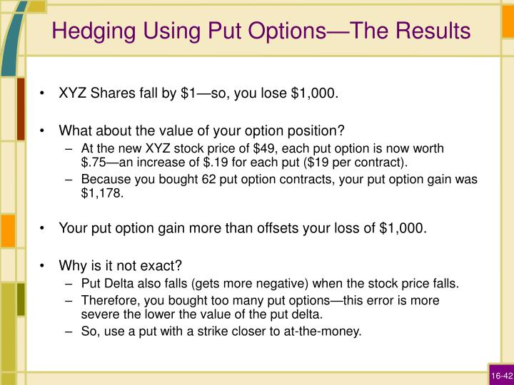 Hedging Using Put Options—The Results