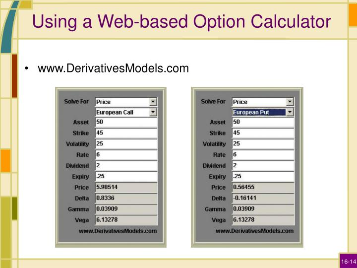 Using a Web-based Option Calculator
