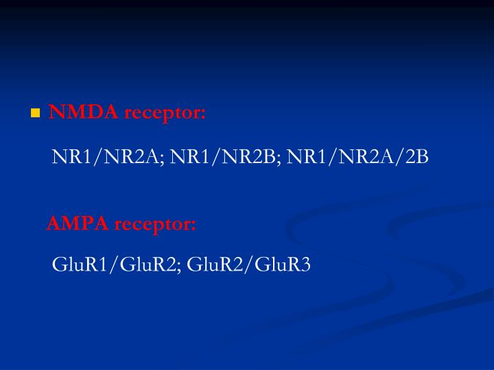 NMDA receptor:
