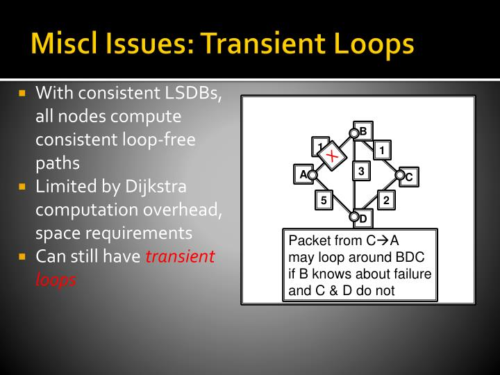Miscl Issues: Transient Loops
