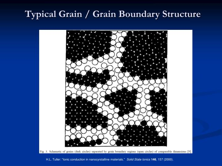 Typical Grain / Grain Boundary Structure