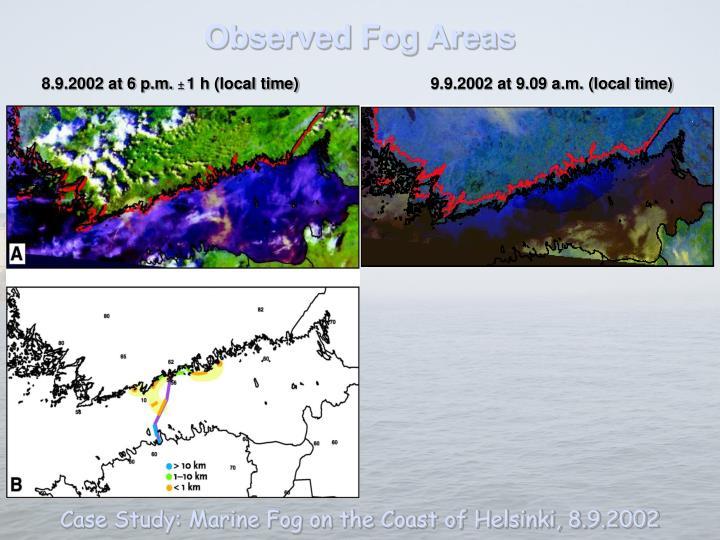 Observed Fog Areas