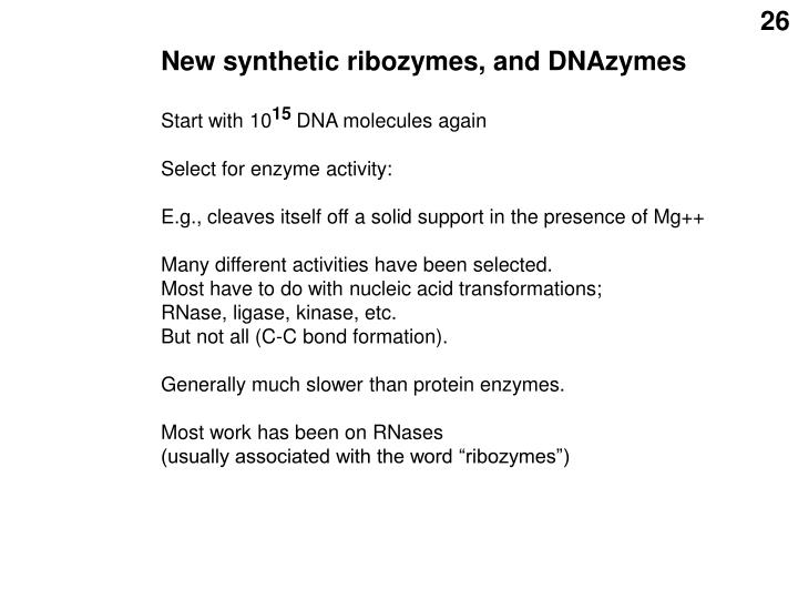 New synthetic ribozymes, and DNAzymes