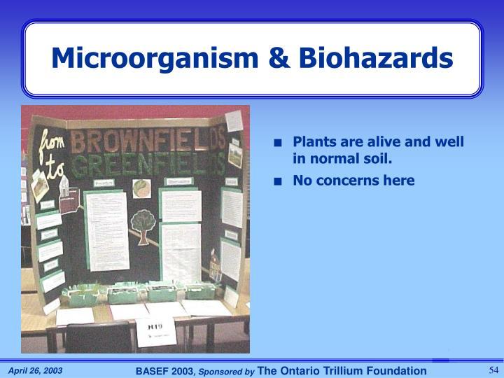 Microorganism & Biohazards