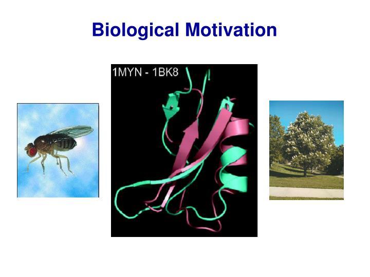 Biological Motivation