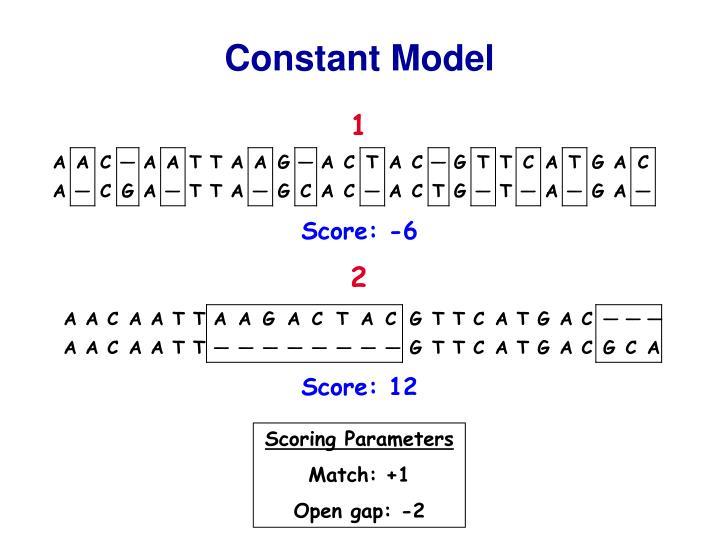 Constant Model