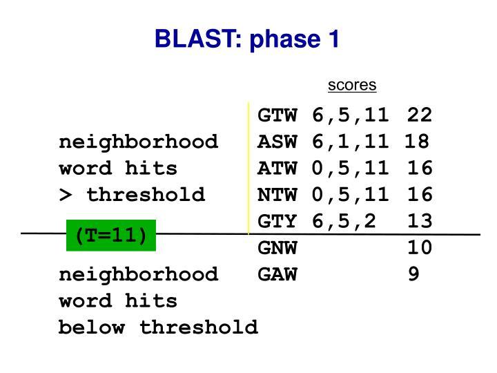 BLAST: phase 1
