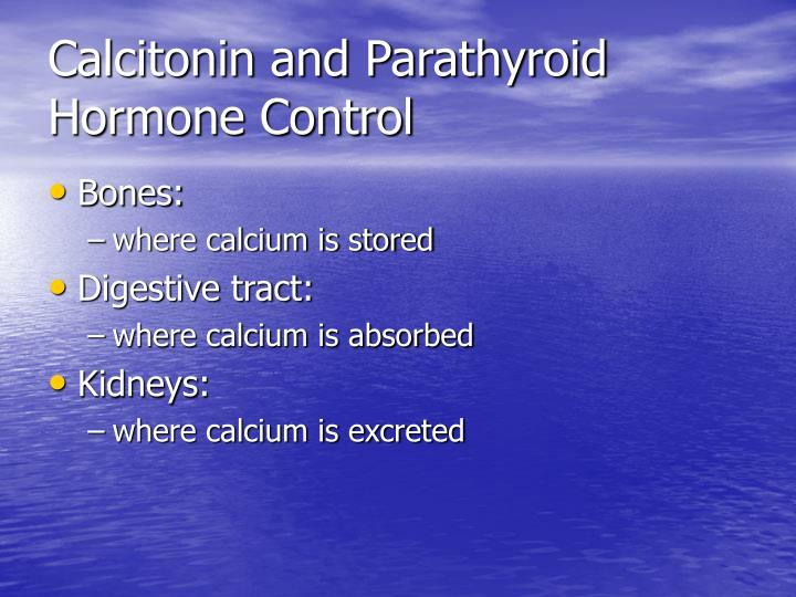 Calcitonin and Parathyroid Hormone Control