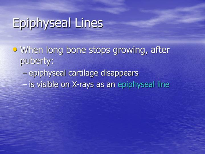 Epiphyseal Lines