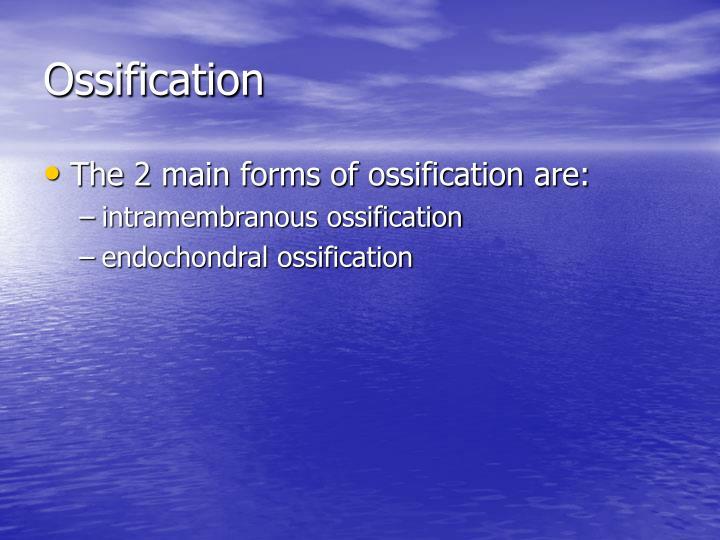 Ossification