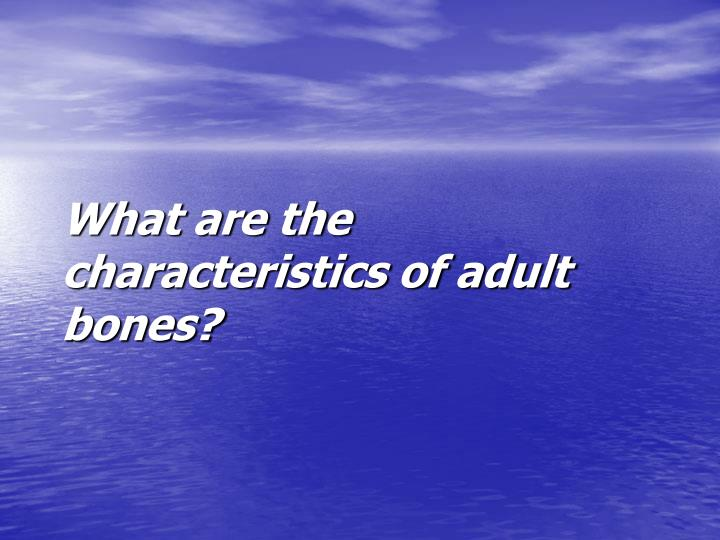 What are the characteristics of adult bones?