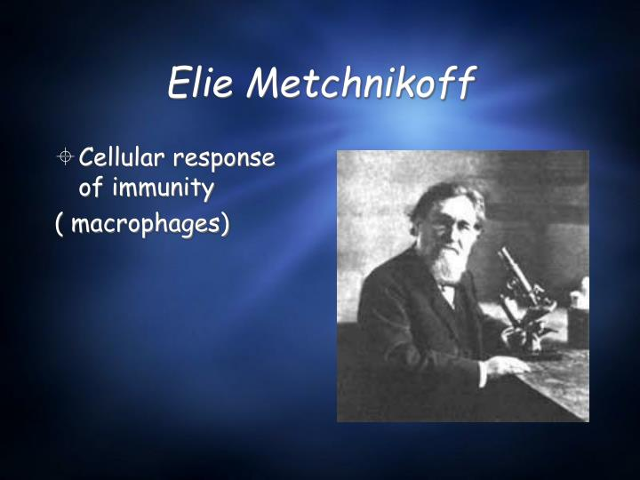 Elie Metchnikoff