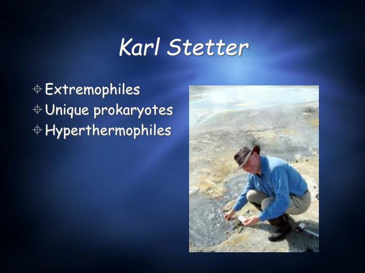 Karl Stetter