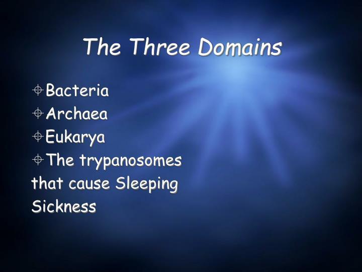 The Three Domains