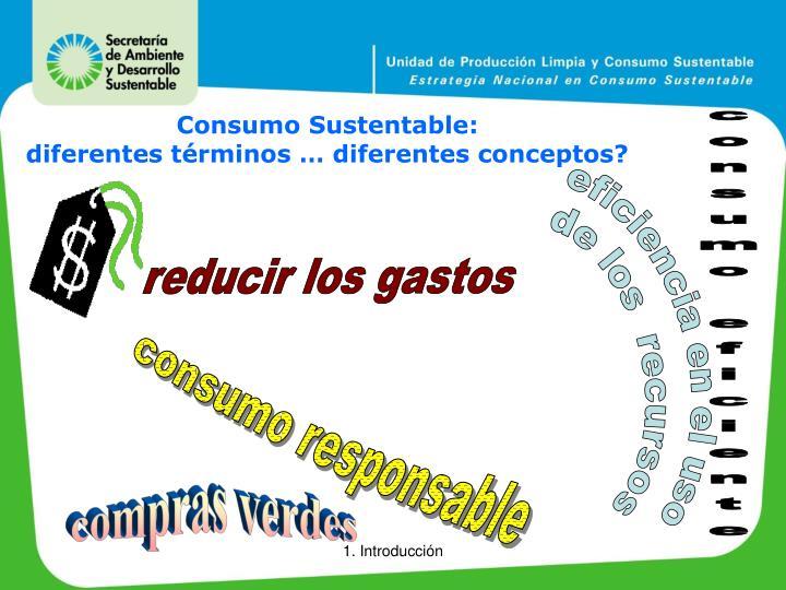 Consumo Sustentable: