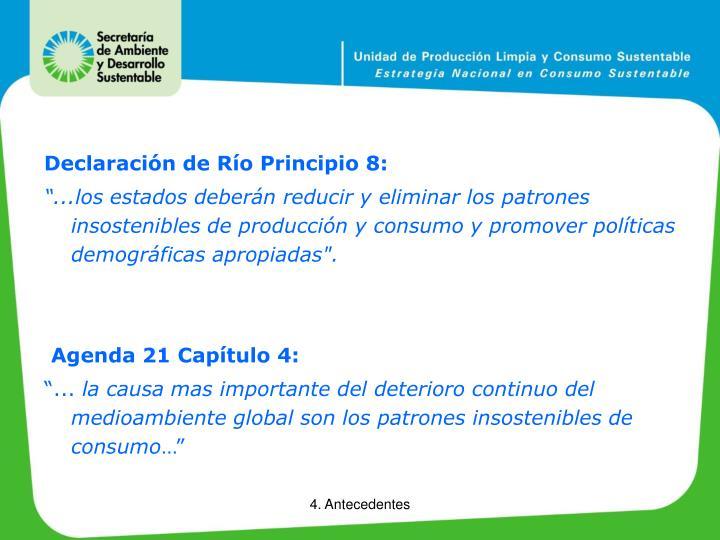 Declaración de Río Principio 8: