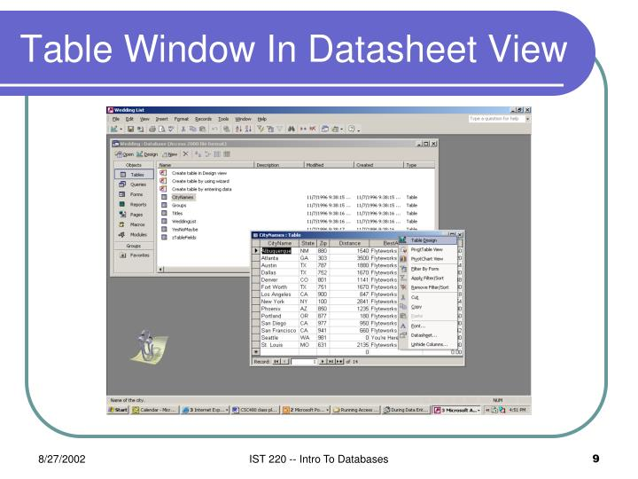 Table Window In Datasheet View