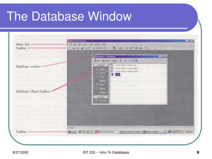 The Database Window