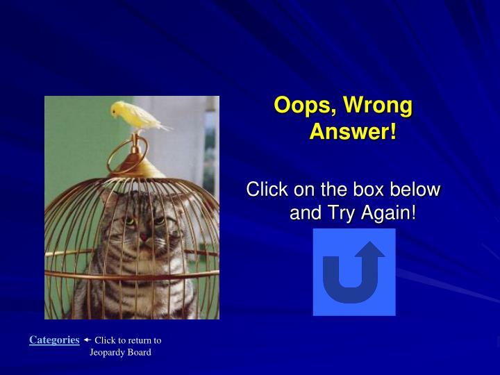 Oops, Wrong Answer!