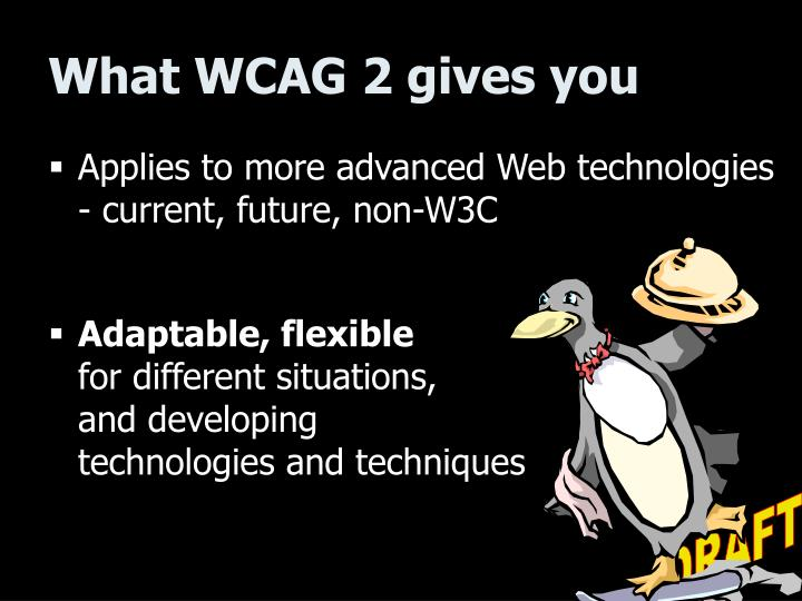 What WCAG 2 gives you