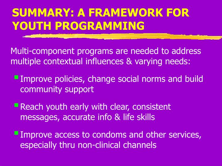SUMMARY: A FRAMEWORK FOR YOUTH PROGRAMMING