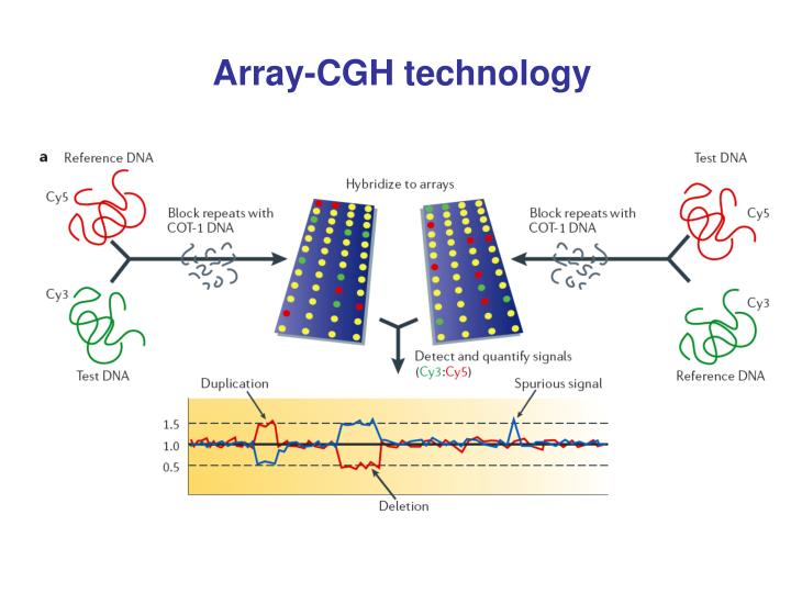 Array-CGH technology