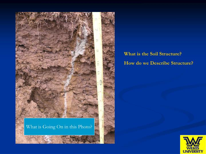 What is the Soil Structure?