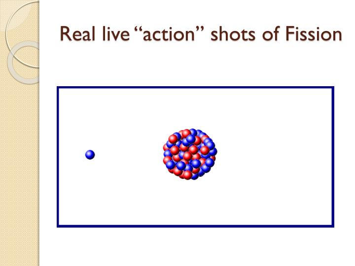 "Real live ""action"" shots of Fission"
