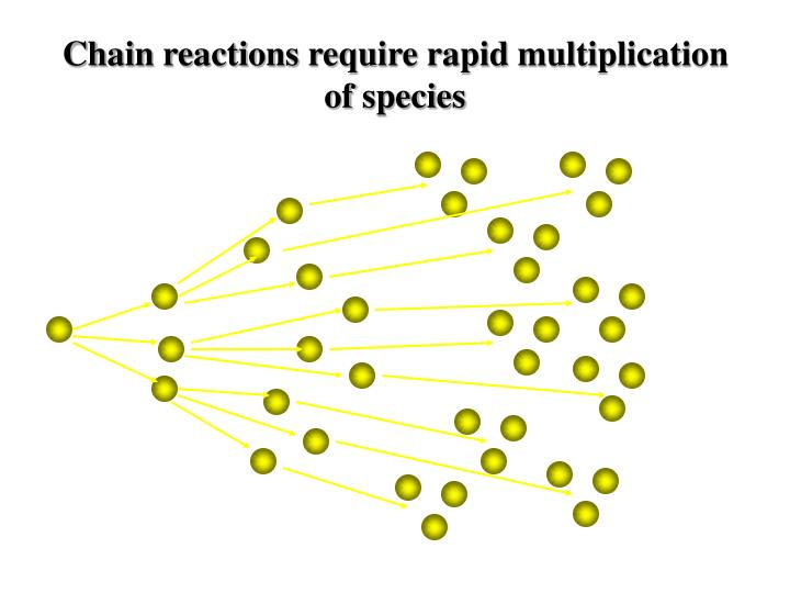 Chain reactions require rapid multiplication of species