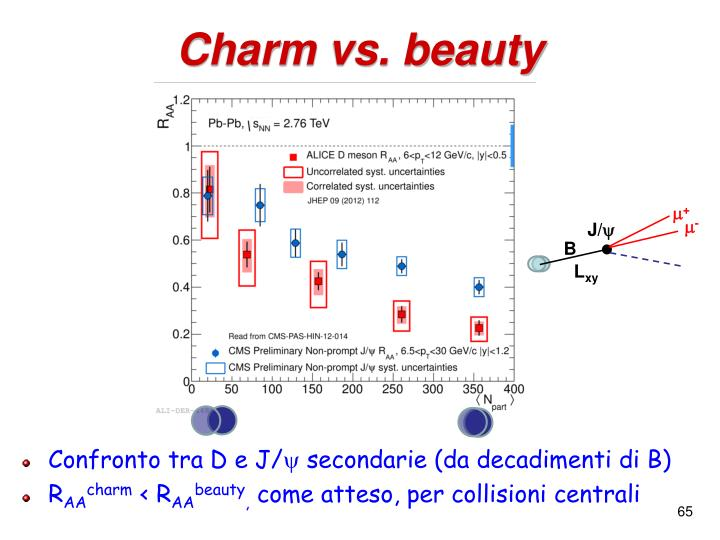Charm vs. beauty